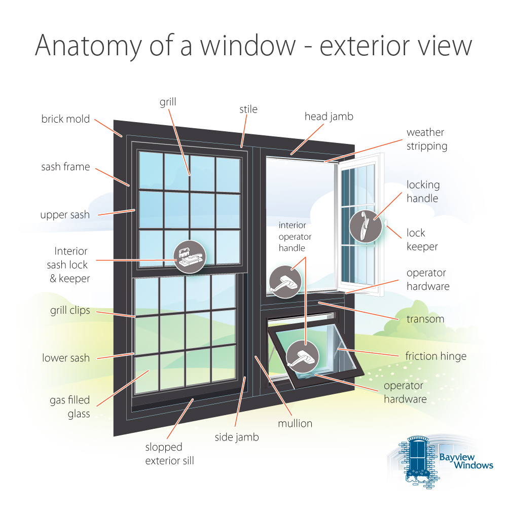 anatomy of and exterior window.
