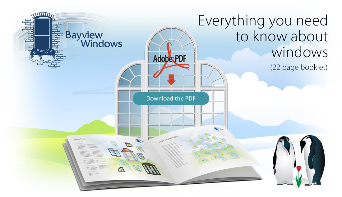 Everything you need to know about windows