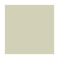 Exterior vinyl window colour - Beige